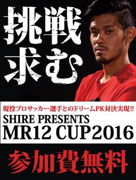 Bnr_12cup
